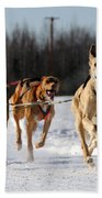 2011 Limited North American Sled Dog Race Beach Towel