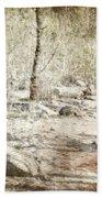 A Couple In The Woods Beach Towel by Joana Kruse