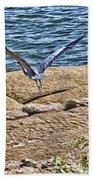 Airborne  Beach Towel