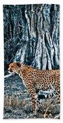 Alert Cheetah Beach Towel by Darcy Michaelchuk