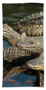 Alligator Pool Party Beach Towel