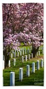 Arlington Cherry Trees Beach Towel