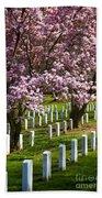Arlington Cherry Trees Beach Towel