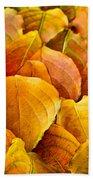 Autumn Leaves  Beach Towel by Elena Elisseeva