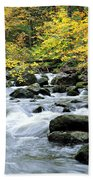 Autumn Stream 3 Beach Towel