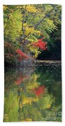 Autumn Tree Reflections Beach Towel