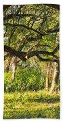 Bent Trees Beach Towel