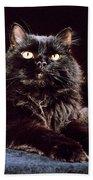 Black Persian Cat Beach Towel