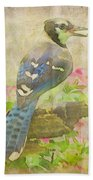 Blue Jay With Texture II Beach Towel