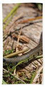 British Grass Snake Beach Towel