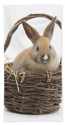 Bunny In A Basket Beach Towel