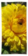 Calendula Named Bon-bon Yellow Beach Towel