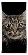 Close Up Of Cats Face Beach Towel