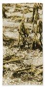 Cornfield After Hailstorm Beach Towel