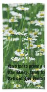 Daisy Fresh Beach Towel