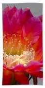 Deep Pink Cactus Flower Beach Towel