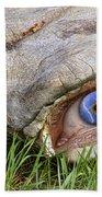 Eye Of A Dinosaur Lightning Beach Towel