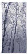 Fairy Tale Forest Beach Towel