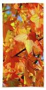 Fall Colors Beach Towel by Carlos Caetano