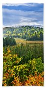 Fall Forest Rain Storm Beach Towel by Elena Elisseeva