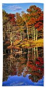 Fall Forest Reflections Beach Towel by Elena Elisseeva