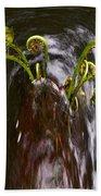 Ferns In A Stream Beach Towel