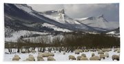 Flock Of Sheep In The Snow Beach Sheet