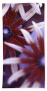 Flower Rudbeckia Fulgida In Uv Light Beach Towel by Ted Kinsman