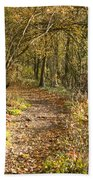 Forest Path Beach Towel