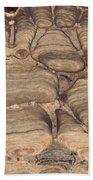 Fossil Stromatolite Beach Towel