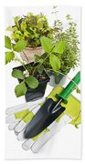Gardening Tools And Plants Beach Towel