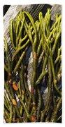 Green Fleece Seaweed Beach Towel