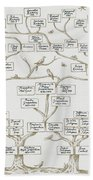 Guggenheim Family Tree Beach Towel by Science Source