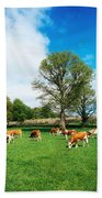 Hereford Bullocks Beach Towel