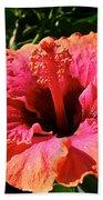 Hibiscus Blossom Beach Towel