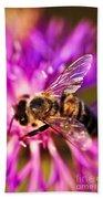 Honey Bee  Beach Towel