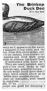 Hunting: Duck Decoy, 1895 Beach Towel