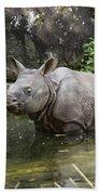 Indian Rhinoceros Rhinoceros Unicornis Beach Towel by Konrad Wothe