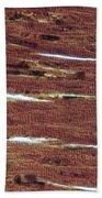 Lm Of Cardiac Muscle Beach Towel