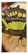 Malachite Butterfly Beach Towel