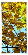Maple Leaf Canopy Beach Towel