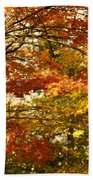 Maple Tree Foliage Beach Towel