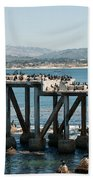 Monterey City Center Beach Towel