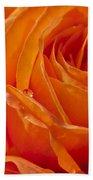 Orange Rose Beach Towel