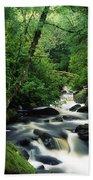 Owengarriff River, Killarney National Beach Towel