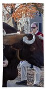 Oxen And Handler Beach Towel