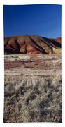 Painted Hills Beach Towel