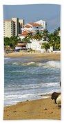 Pelicans On Beach In Mexico Beach Towel