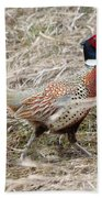 Pheasant Walking Beach Towel