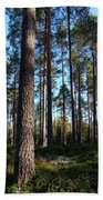 Pine Forest Beach Towel